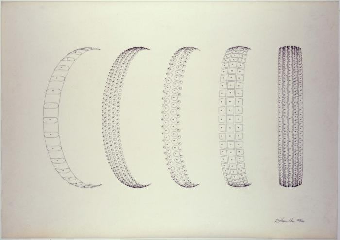 FRAME THREE Treads (Line) (1972) Depth of Cut (1972)